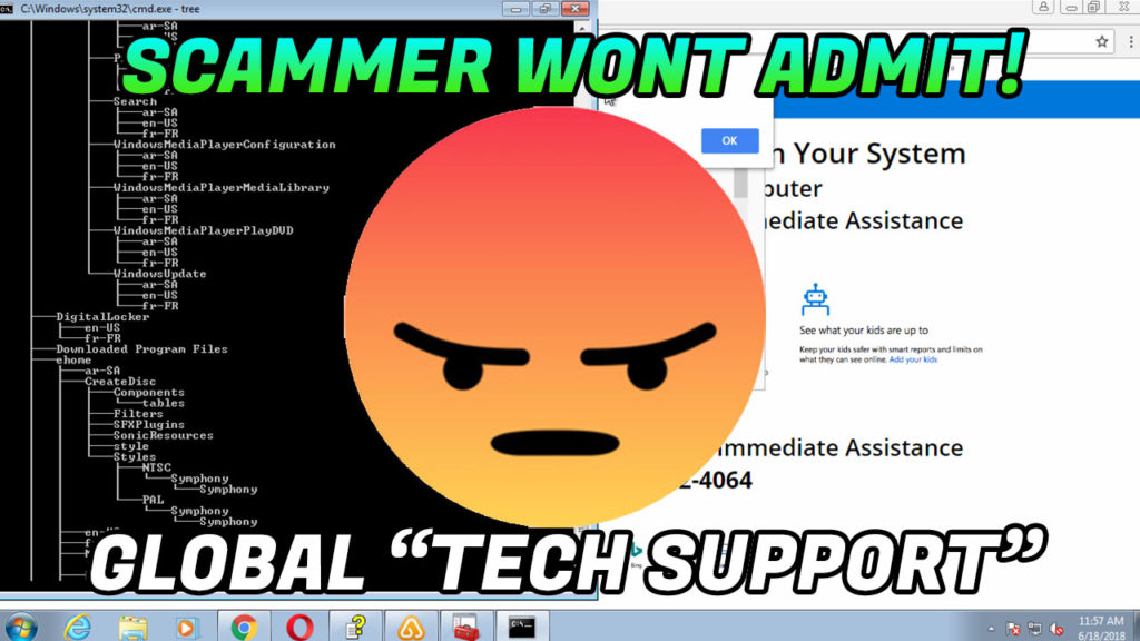 Tech Support Scam / Scammer won't admit to scam! – 1-844-739